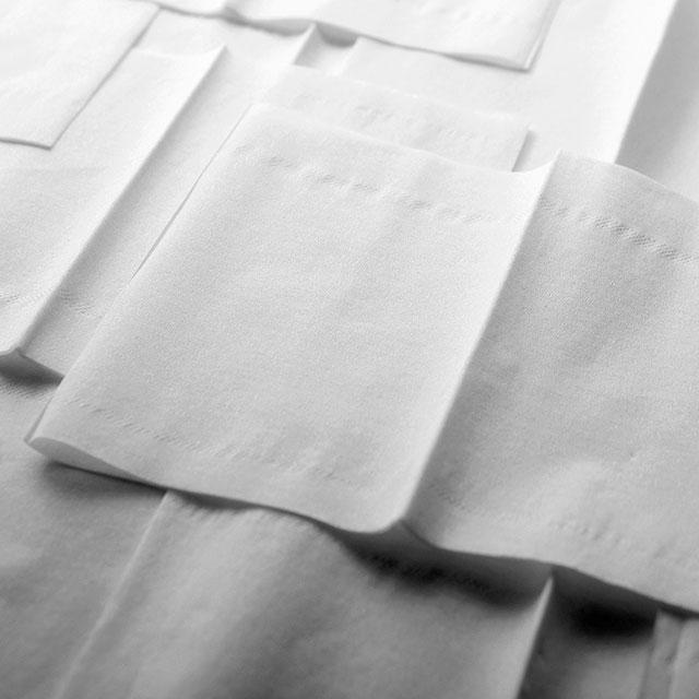 Tissue Manufacturer Case Study