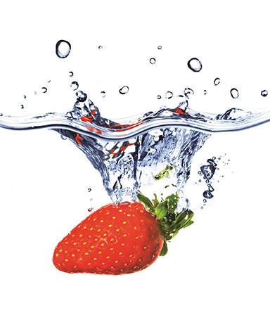 Processed Fruit & Flavorings Image