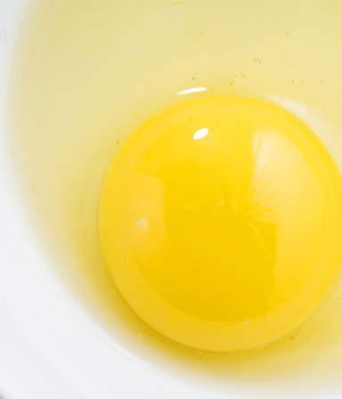 Liquid Egg Image