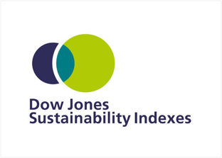Down Jones Sustainability Indexes
