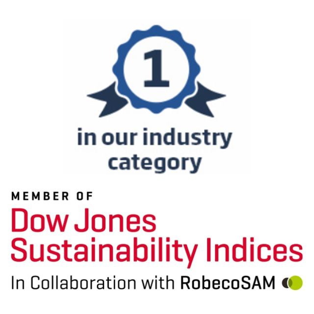 The Dow Jones Sustainability Index