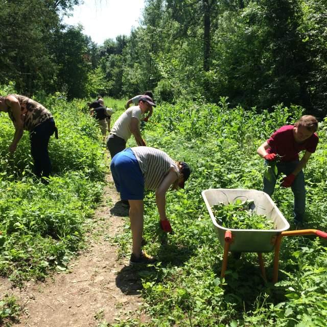 Voluntariatul ca parte integrantă din activitatea noastră